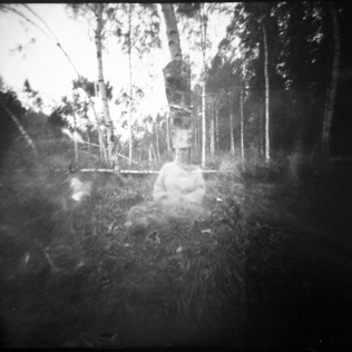 Pine hole photo. Self Portrait with birch trees
