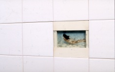 Diving, Detail