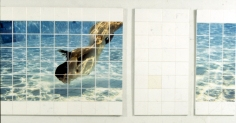 """ diving"" Photo transfer on tile. 200 x 130cm"